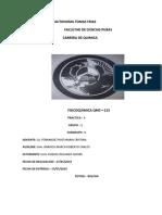 CALOR_DE_COMBUSTION[1].docx