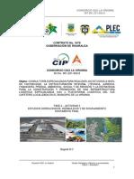 Infor Final Vers 6 Proy PLEC 2019
