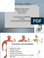 diapositivassistemaoseo-161128124347.pdf