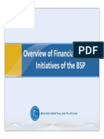 BSP Financial Inclusion Overview