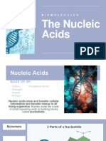 GenBio1 Biomolecules Nucleic Acids.pptx