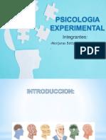 psicologia experimental.pptx