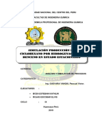 PROCESO-DE-SIMULACION (1).docx