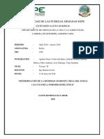 Informe Densidad Aparente Relativa