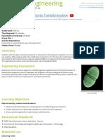 Bacteria Transformation - Activity - TeachEngineering
