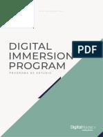 Digital Immersion Program