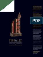 P&L Inversiones.pdf