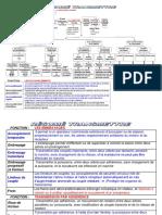 resume-fonction-transmettre.pdf