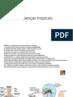 Doenças Tropicais [Salvo Automaticamente] Por Point