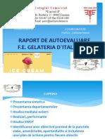 AUTOEVALUARE FE GELATERIA D`ITALY SRL