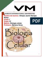 Proyecto Final de Biologia Celular Olimpia Jazmin Barajas Nuñez PDF