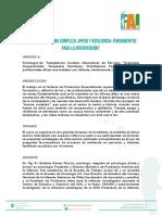 Programa Trauma Complejo, Apego y Resiliencia, 21 Nov, Temuco