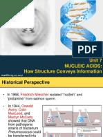 Unit 7 Nucleic Acid Chemistry