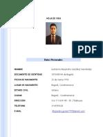 Hoja de Vida Alejandro González Hernández(3)