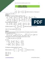T01ALGMATPR+Problemas+Matrices+(Sol)+19
