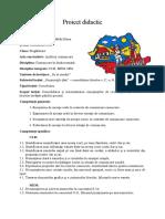 Proiect Didactic Cerc Pedagogic
