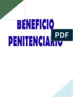 BENEFICIOS PENITENCIARIOS