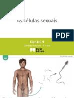 ctic9 N2 As células sexuais.pptx