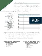 Human Digestive System Worksheet