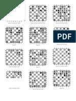 xadrez táticas