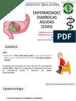 enfermedadesdiarreicas-170810220653