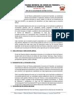 Terminos de Referencia Chavin de Pariarca. Canal de Riego