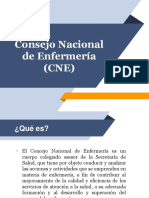 Consejo Nacional de Enfermería