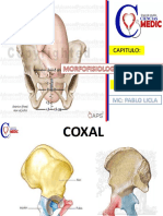 Morfofisiologia de La Pelvis Essalud 2019