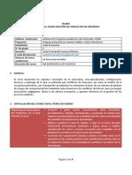 Sílabo Curso Conflictos de Intereses-Grupo 02
