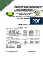 Informe Final Femsar Fiq Corregir