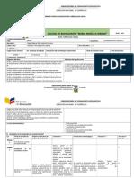 FORMATO_PARA_PLANIFICACION_CURRICULAR_AN  d.doc