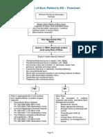 2014 Burn Patient Management - Clinical Practice Guidelines