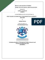 AmitJagdale P16013 Functional
