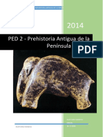 PED_2_PAPI_ACG (1)