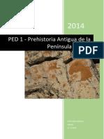 PED_PAPI_ACG.pdf