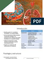 Mico Bacterias