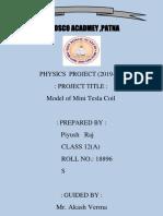TESLA COIL REPORT