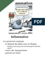 Inflammation D