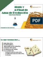 AGUA DE PRODUCCIÓN