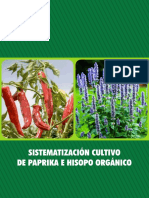 69 Cultivo de Paprika e Hisopo Organico