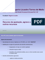 Professor Rogerio Licastro Torres de Mello