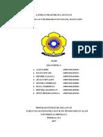 laporan fieldtrip sungsang.docx