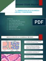 Histologis y Embriologia de g.t y g.pt