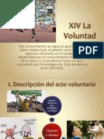 XIV-XVI La Voluntad y La Libertad