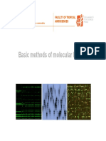 Metodologia de biologia molecular