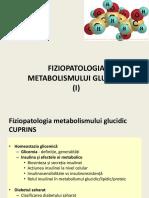 Metabolism glucidic
