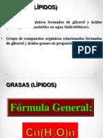 Grasas (lípidos).pdf