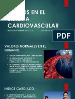 Fluidos en El Sistema Cardiovascular