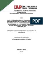 APOYO EMOCIONAL DE LOS PROFESIONALES DE ENFERMERÍA Y SU RELACIÓN EN EL PROCESO DE RECUPERACIÓN DE LOS PACIENTES INTERNADOS EN LA UNIDAD DE CUIDADOS INTENSIVOS DEL HOSPITAL REGIONAL HONORIO DELGADO, AREQUIPA, 2012