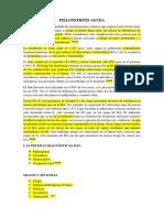 pielonefritis.docx